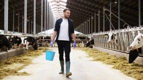 Vacas e homem com a cubeta do feno que anda na exploração agrícola vídeos de arquivo
