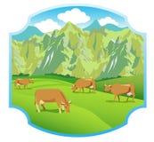 Vacas en los prados alpinos Gama de montañas y valle verde Fondo para la etiqueta Imagen de archivo libre de regalías