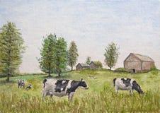 Vacas no prado Foto de Stock Royalty Free