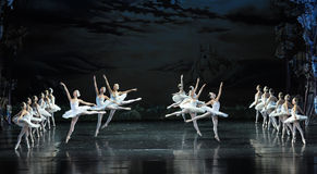 Vacated-ballet Swan Lake Royalty Free Stock Image