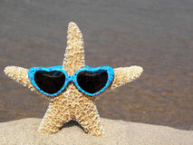 starfish with heart sunglasses royalty free stock image