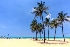 Vacation on the beach on the hot Caribbean islands with green pa. A good vacation on the beach on the hot Caribbean islands with green palms, yellow sand, blue Stock Image