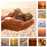 Vacation collage Stock Photography