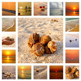 Vacation collage Royalty Free Stock Photos
