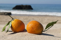 Vacation concept. Two kissing ripe oranges on sandy the beach, romantic getaway Royalty Free Stock Photography