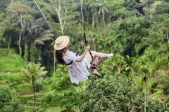Vacation concept. Happy young woman in white dress and hat swinging at palm grove. royalty free stock photos