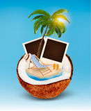 Vacation concept. Palm tree, photos and beach chair Royalty Free Stock Photo