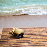 Vacation concept. Several objects left on the beach, while their owner went swimming Royalty Free Stock Images