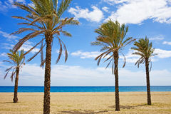 Vacation on Costa del Sol Stock Image