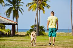 Vacation with dog Stock Image