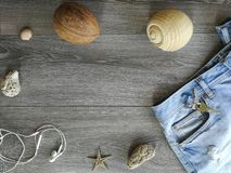 Vacation holyday and travel trip. To the favorite destination. Jeans and seashell background texture  object details abstract sea space starfish Royalty Free Stock Photography