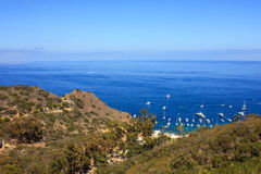Vacation Island. A view of Sunny and Peaceful afternoon at Catalina island Royalty Free Stock Image
