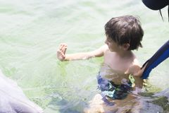 Vacation Lifestyle -Happy Boy hugging a dolphin Royalty Free Stock Images