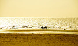 Vacation Lifestyles-Couple Horseback Riding at Sunset Royalty Free Stock Photography