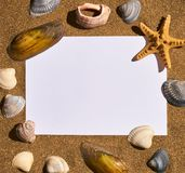 Vacation memories from beach, seashell and starfish Stock Images