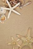 Vacation Memory From Beach Stock Photo