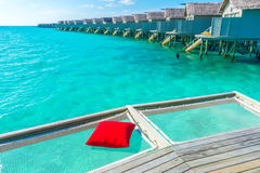 Vacation net seat in tropical Maldives island and beauty of the Royalty Free Stock Images