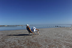 Vacation Outback Lake. A mature woman sitting relaxed in a chair at the waterfront of a salt lake in Outback Australia Royalty Free Stock Photography
