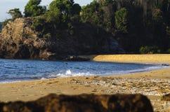 Soft wave hitting sandy beach under bright sunny day Royalty Free Stock Photos