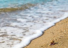 Vacation relax concept, sea landscape with shell, waves stock photos