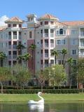 Vacation Resort Buildings & Swan Lake Stock Images