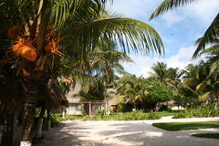 Vacation Resort in Reunion - Africa Stock Photography