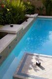 Vacation Resort Swimming Pool Stock Image