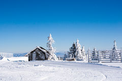 Vacation rural winter background with small wooden alpine house, white pines, fence, snow field, mountains Stock Image