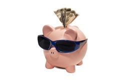 Piggy bank wearing shades Royalty Free Stock Image