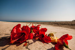 Vacation in Spain. Mediterranean Sea Royalty Free Stock Image