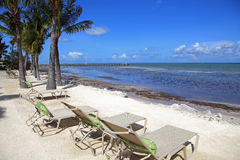 Vacation time in the Florida Keys Royalty Free Stock Photography