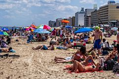 Vacation Time. People sunning on beach during vacation season Stock Image