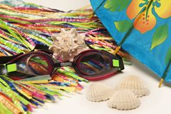 Vacation tropical. Collection of vacation items usually in Hawaii showing sea shells, hula skirt straw, goggles for swimming and umbrella royalty free stock image