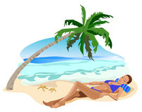 Vacation in the Tropics Stock Photos