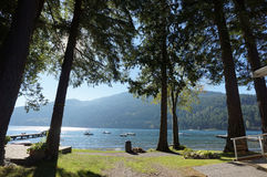 Vacation. A view of the lake through the trees during summer Stock Photography