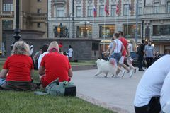 Family with a white fluffy dog walks amicably down the street in step on the Manege square in Moscow. Vacationers tourists sit on the lawn, a family with a white stock photography