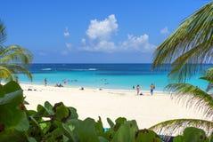 Vacationing à la plage de flamenco dans les Caraïbe images stock