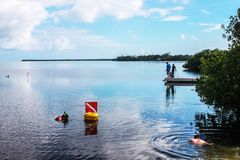 Vacationing - boys fishing on a dock and people snorkeling near the mangroves in  beautiful blue water under a perfect sky stock photos
