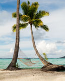 Vacations in paradise Royalty Free Stock Images