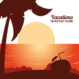 Vacations paradisiac island caribbean exotic sunshine poster. Vector illustration eps 10 Royalty Free Stock Images