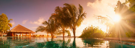 Vacations in the tropics by the pool. The sun`s rays shine through leaves of palm trees Royalty Free Stock Photography