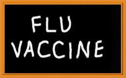 Vaccino di influenza Fotografia Stock Libera da Diritti