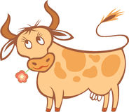 Vache à dessin animé Photo stock