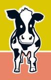 Vache de sourire Photographie stock libre de droits