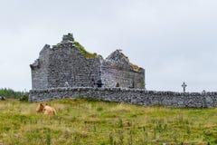 Vache devant l'église Carron photos stock