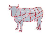 Vache et coupe de boeuf ou de diagramme de boeuf Diagramme de diff?rentes parties d'une vache, illustration libre de droits