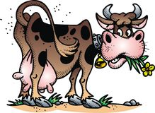 Vache heureuse Images stock