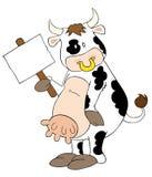 Vache laitière drôle avec la plaquette blanche. Photographie stock