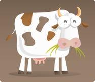 Vache mangeant l'herbe Image stock