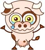 Vache mignonne pleurant et se sentant triste Image libre de droits